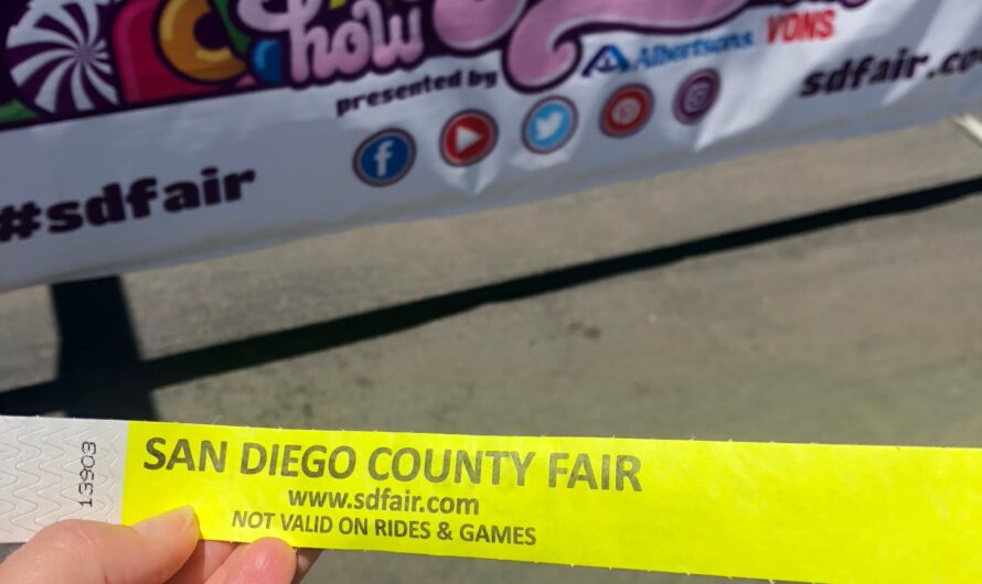 #MilMomAdventure Tips for the SD Fair