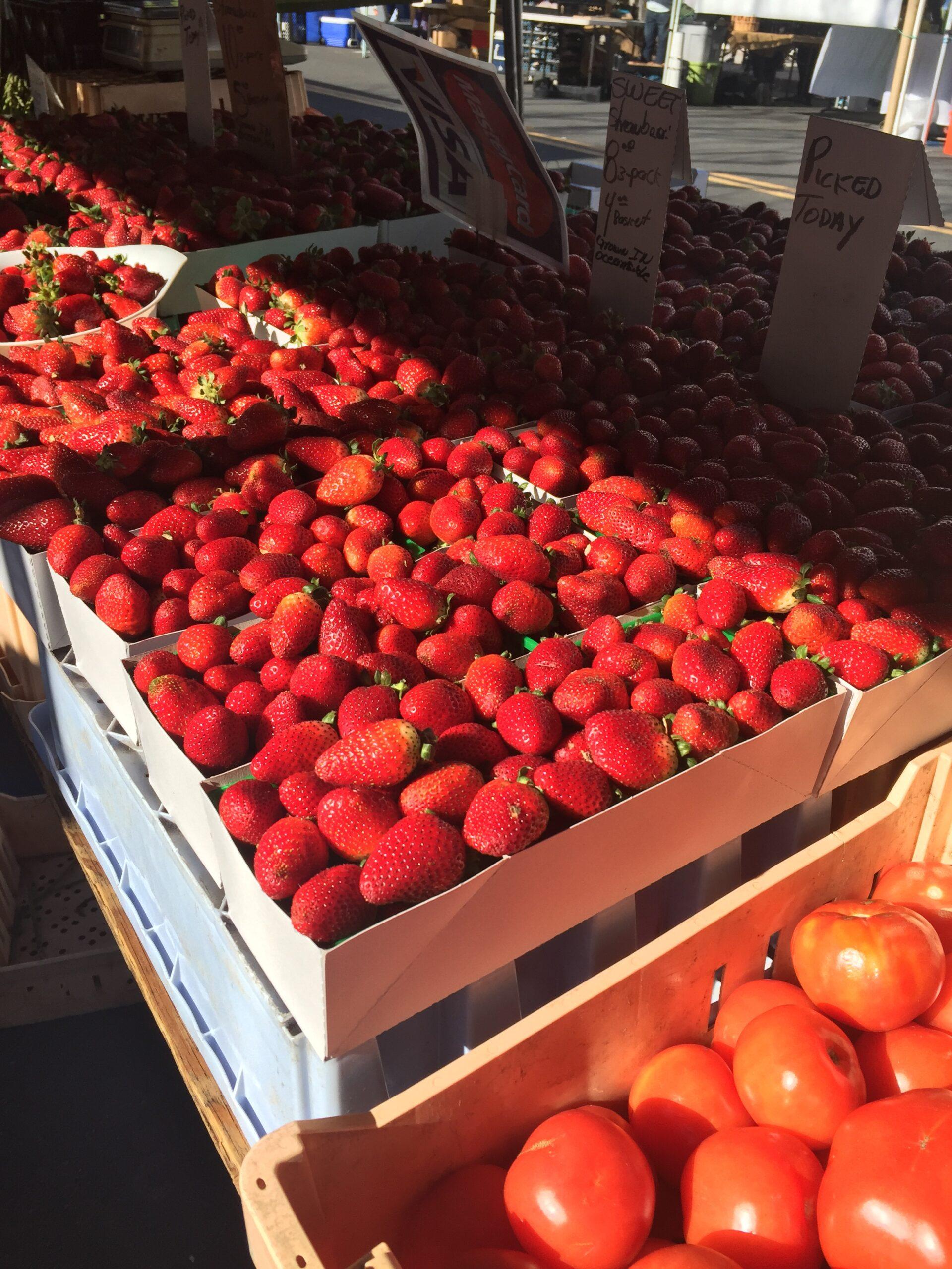 Carlsbad Village Farmer's Market