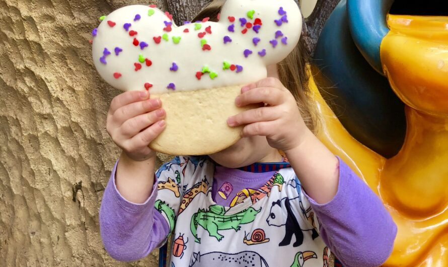 What treats should you eat at Disneyland?